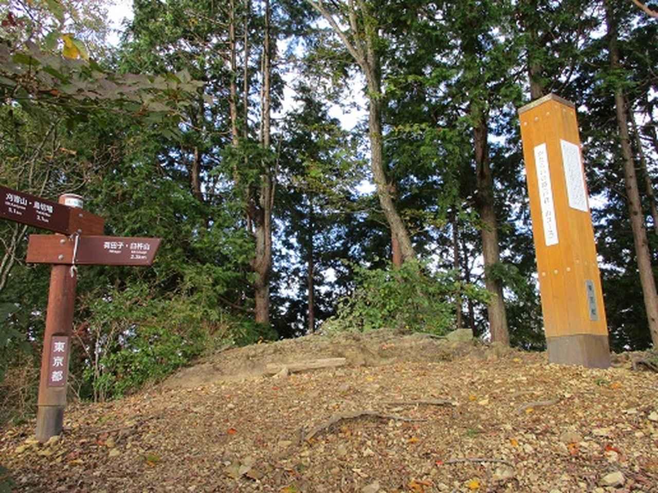 画像8: 【山旅会・登山ガイドこだわりツアー】岡田ガイドからの便り・和田峠から市道山ツアーの下見にいってまいりました!