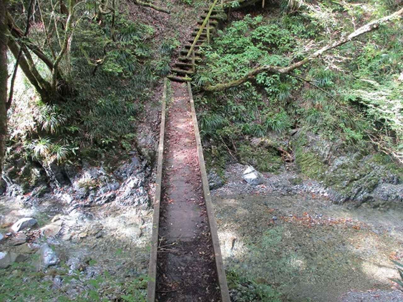画像11: 【山旅会・登山ガイドこだわりツアー】岡田ガイドからの便り・和田峠から市道山ツアーの下見にいってまいりました!