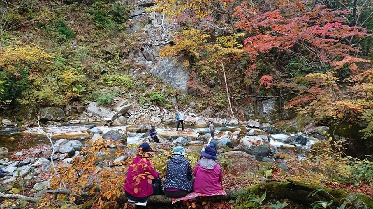 画像4: 【山旅会・登山ガイドこだわりツアー】岡田ガイドからの便り・照葉峡ハイキングツアーにいってまいりました!