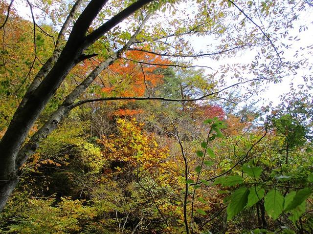 画像3: 【山旅会・登山ガイドこだわりツアー】岡田ガイドからの便り・霊山ツアーにいってまいりました!