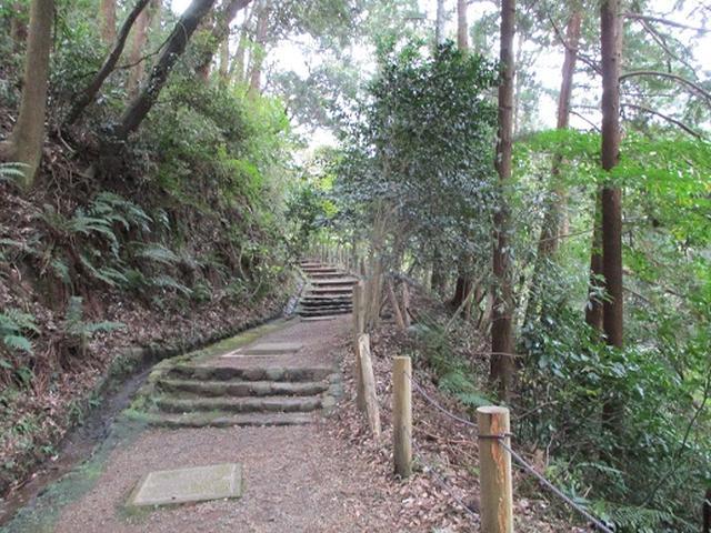 画像2: 【山旅会・登山ガイドこだわりツアー】岡田ガイドからの便り・散在ヶ池から祇園山ツアーの下見にいってまいりました!