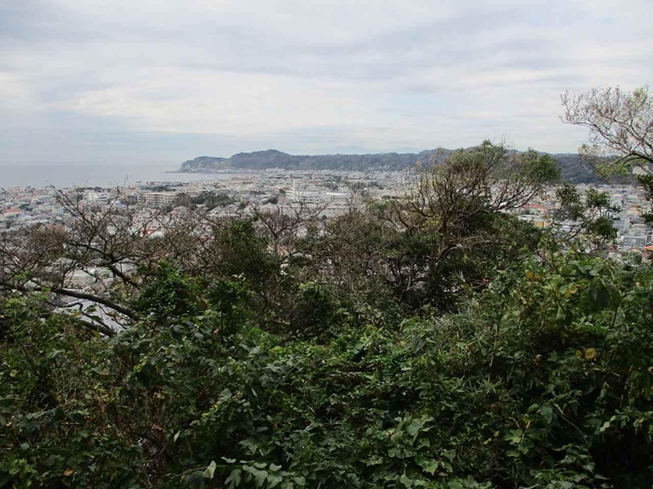 画像10: 【山旅会・登山ガイドこだわりツアー】岡田ガイドからの便り・散在ヶ池から祇園山ツアーの下見にいってまいりました!