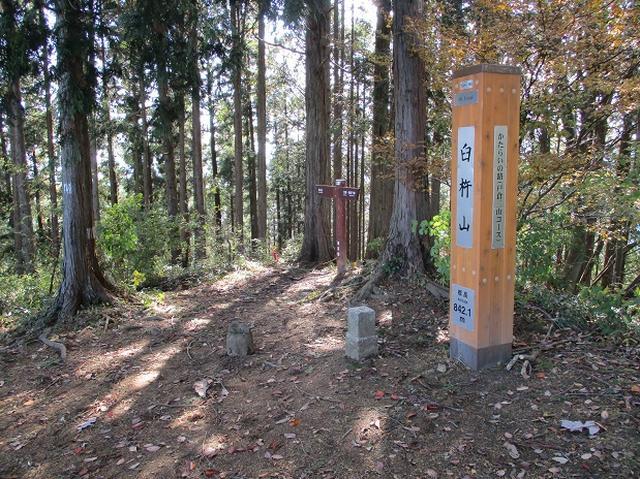 画像8: 【山旅会・登山ガイドこだわりツアー】岡田ガイドからの便り・臼杵山ツアーの下見にいってまいりました!