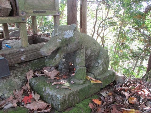 画像7: 【山旅会・登山ガイドこだわりツアー】岡田ガイドからの便り・臼杵山ツアーの下見にいってまいりました!