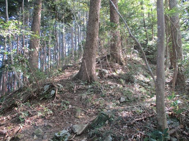 画像2: 【山旅会・登山ガイドこだわりツアー】岡田ガイドからの便り・臼杵山ツアーの下見にいってまいりました!