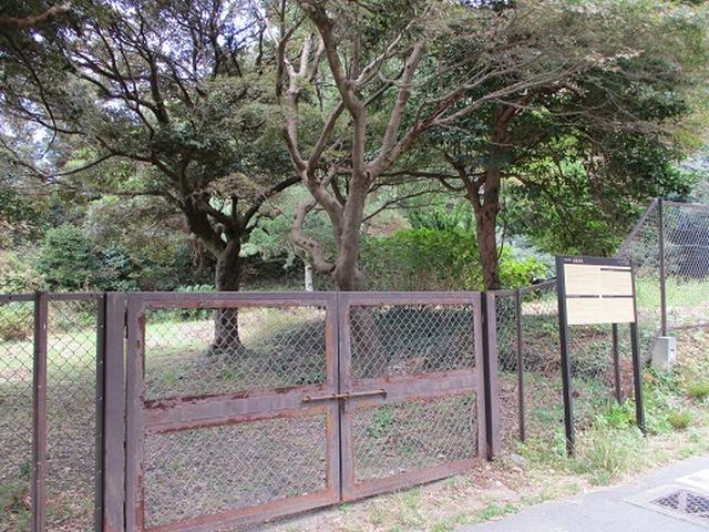 画像7: 【山旅会・登山ガイドこだわりツアー】岡田ガイドからの便り・散在ヶ池から祇園山ツアーの下見にいってまいりました!