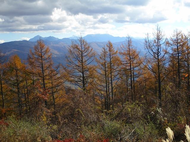 画像5: 【山旅会・登山ガイドこだわりツアー】岡田ガイドからの便り・守屋山の2回目のツアーにいってまいりました!
