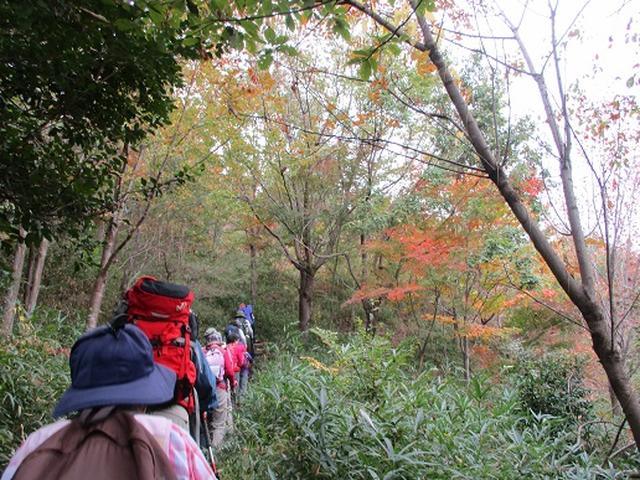 画像2: 【山旅会・登山ガイドこだわりツアー】岡田ガイドからの便り・安土城と繖(きぬがさ)山ツアーにいってまいりました!