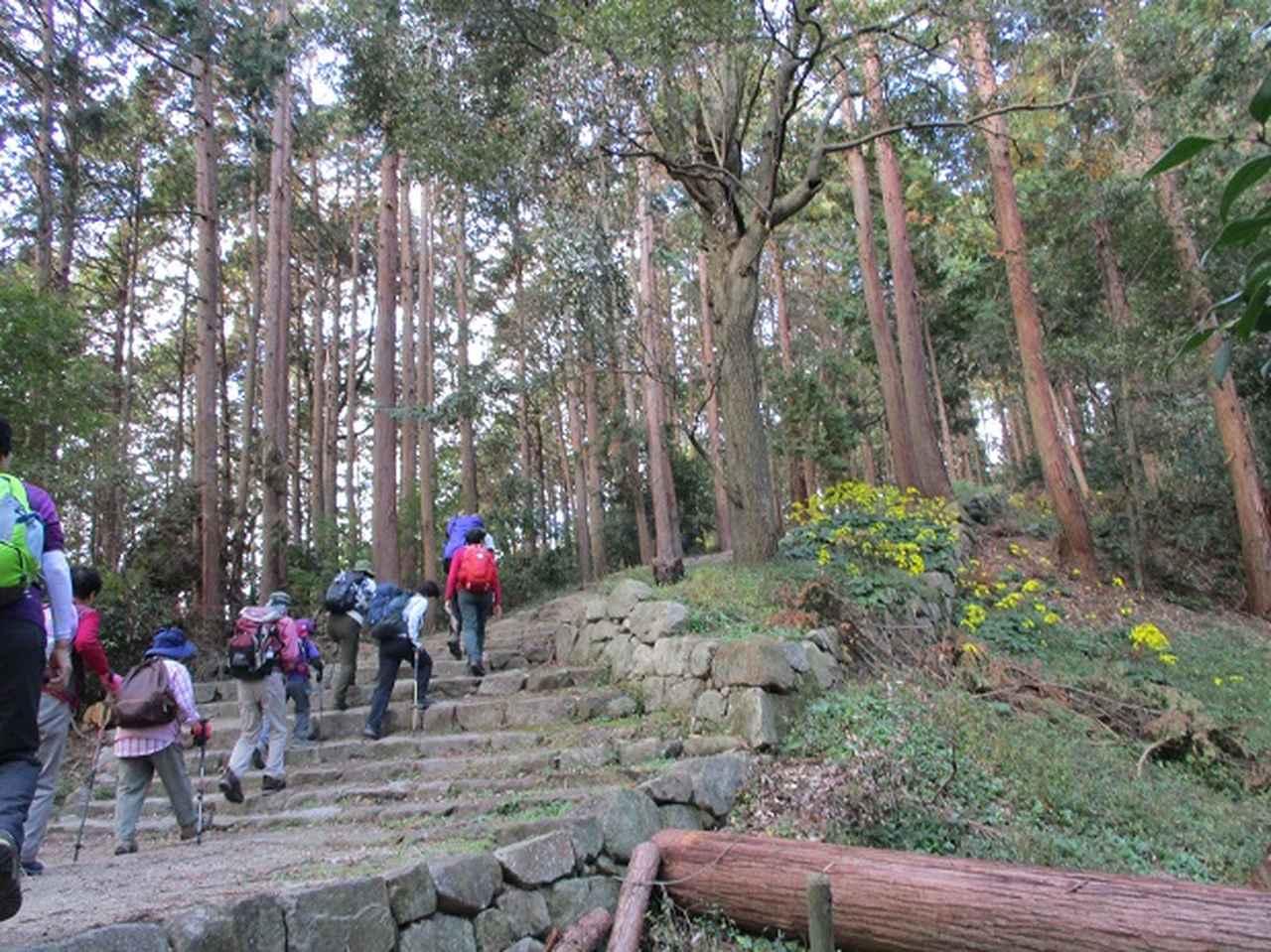 画像7: 【山旅会・登山ガイドこだわりツアー】岡田ガイドからの便り・安土城と繖(きぬがさ)山ツアーにいってまいりました!