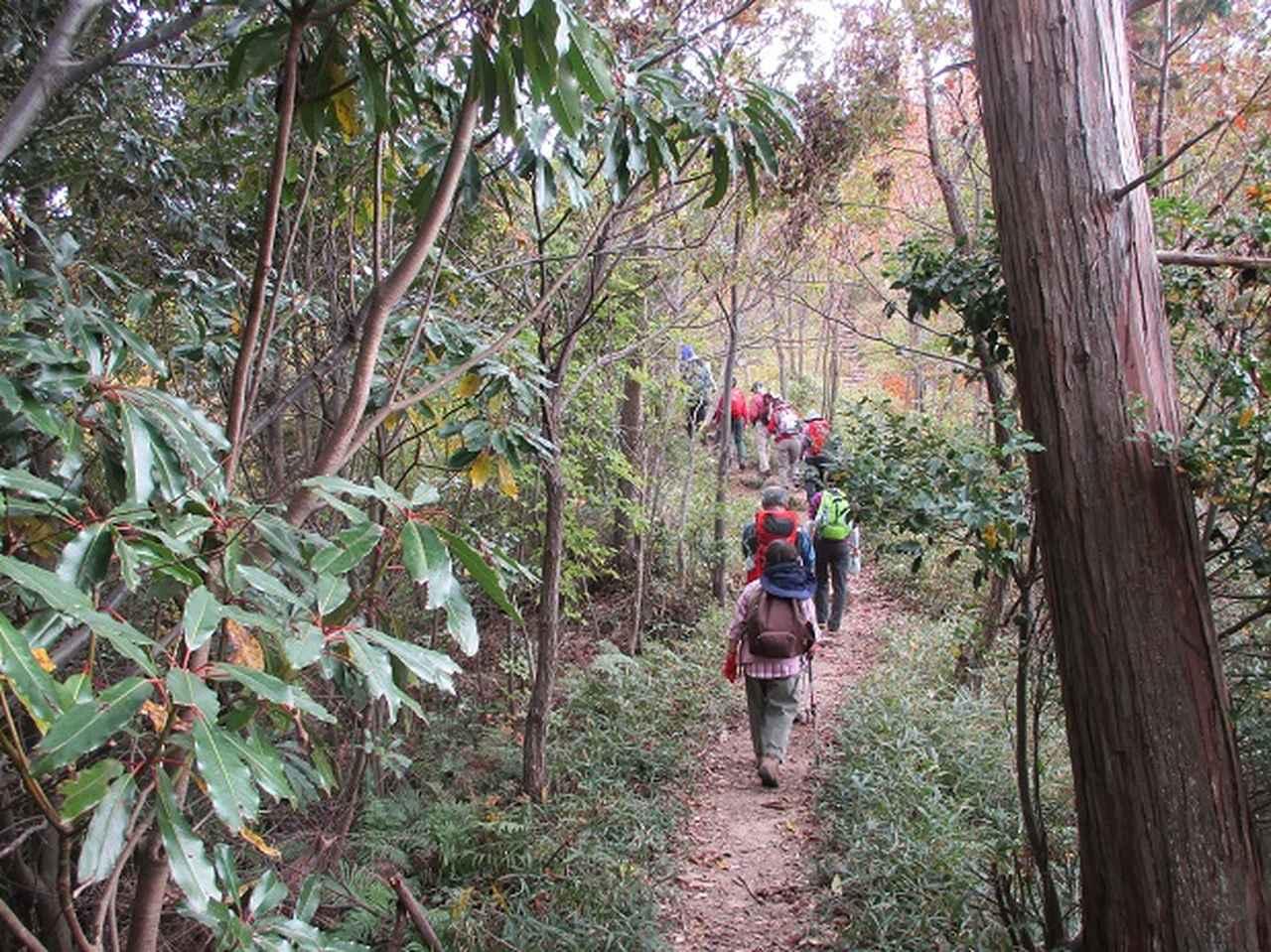 画像3: 【山旅会・登山ガイドこだわりツアー】岡田ガイドからの便り・安土城と繖(きぬがさ)山ツアーにいってまいりました!