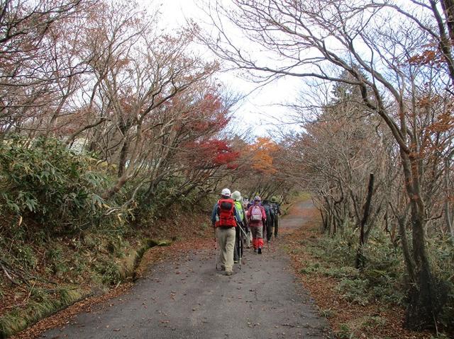 画像11: 【山旅会・登山ガイドこだわりツアー】岡田ガイドからの便り御在所岳ツアーにいってまいりました!
