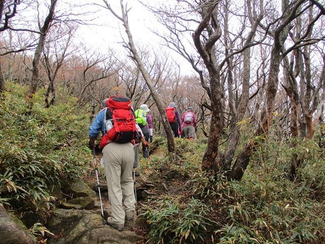 画像4: 【山旅会・登山ガイドこだわりツアー】岡田ガイドからの便り御在所岳ツアーにいってまいりました!