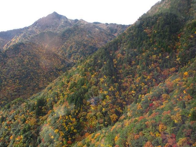 画像2: 【山旅会・登山ガイドこだわりツアー】岡田ガイドからの便り御在所岳ツアーにいってまいりました!