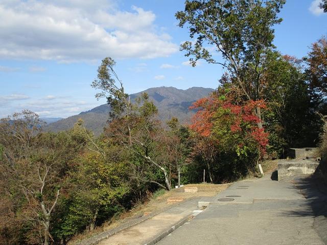 画像9: 【山旅会・登山ガイドこだわりツアー】岡田ガイドからの便り・大文字山の下見にいってまいりました!