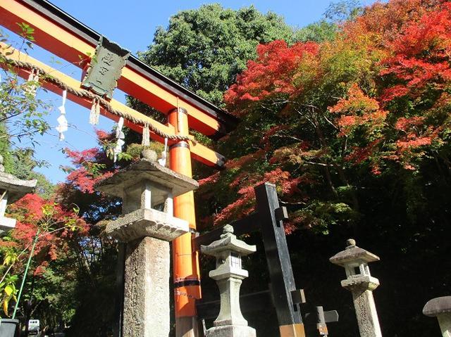 画像8: 【山旅会・登山ガイドこだわりツアー】岡田ガイドからの便り高雄から嵐山ツアーの下見にいってまいりました!