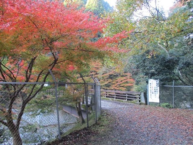 画像4: 【山旅会・登山ガイドこだわりツアー】岡田ガイドからの便り高雄から嵐山ツアーの下見にいってまいりました!