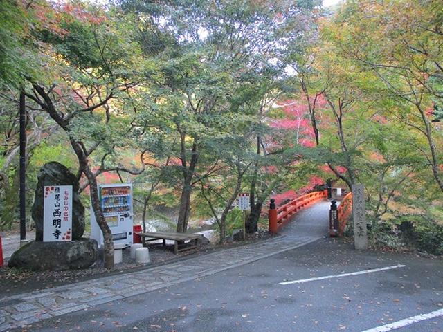画像2: 【山旅会・登山ガイドこだわりツアー】岡田ガイドからの便り高雄から嵐山ツアーの下見にいってまいりました!