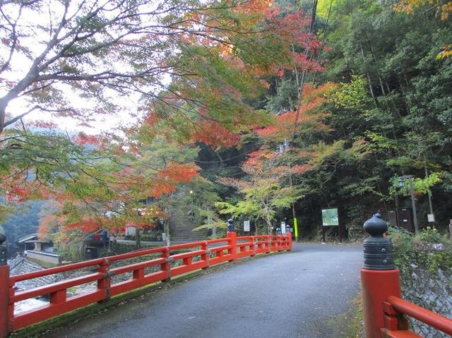 画像3: 【山旅会・登山ガイドこだわりツアー】岡田ガイドからの便り高雄から嵐山ツアーの下見にいってまいりました!