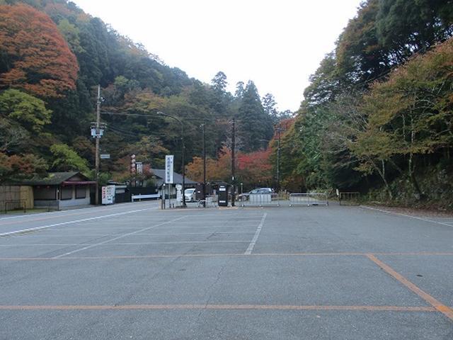 画像1: 【山旅会・登山ガイドこだわりツアー】岡田ガイドからの便り高雄から嵐山ツアーの下見にいってまいりました!