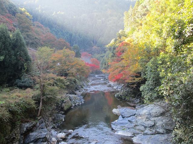 画像6: 【山旅会・登山ガイドこだわりツアー】岡田ガイドからの便り高雄から嵐山ツアーの下見にいってまいりました!