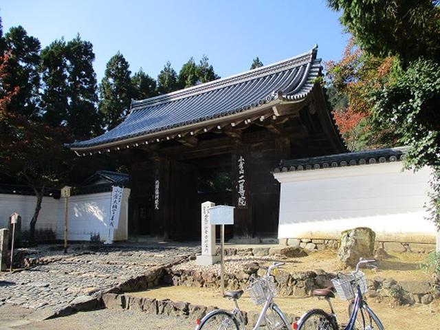 画像9: 【山旅会・登山ガイドこだわりツアー】岡田ガイドからの便り高雄から嵐山ツアーの下見にいってまいりました!