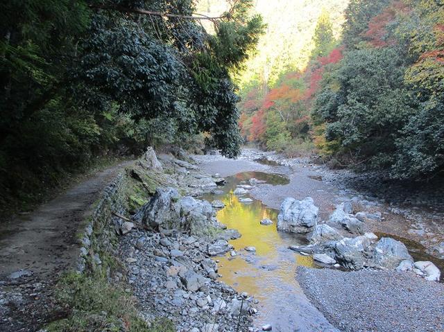 画像5: 【山旅会・登山ガイドこだわりツアー】岡田ガイドからの便り高雄から嵐山ツアーの下見にいってまいりました!