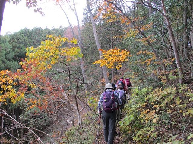 画像6: 【山旅会・登山ガイドこだわりツアー】岡田ガイドからの便り・和田峠から市道山ツアーにいってまいりました!