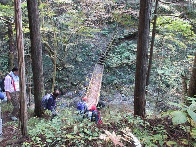 画像9: 【山旅会・登山ガイドこだわりツアー】岡田ガイドからの便り・和田峠から市道山ツアーにいってまいりました!