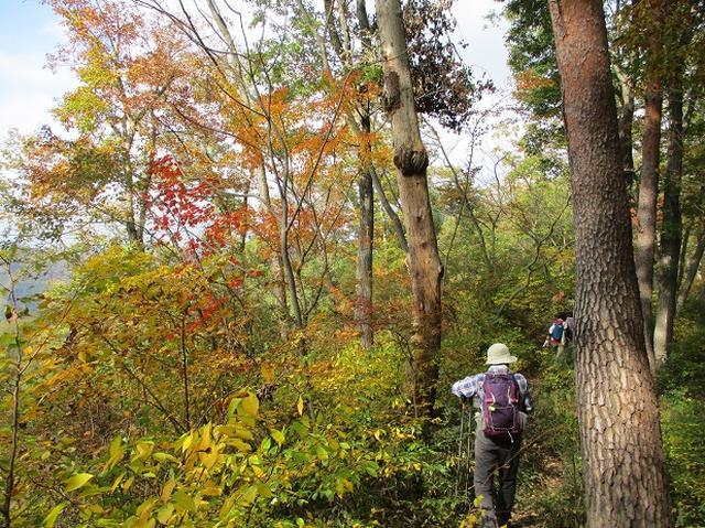 画像5: 【山旅会・登山ガイドこだわりツアー】岡田ガイドからの便り・和田峠から市道山ツアーにいってまいりました!