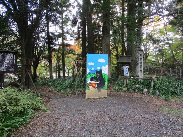 画像9: 【山旅会・登山ガイドこだわりツアー】岡田ガイドからの便り矢倉岳の下見にいってまいりました!