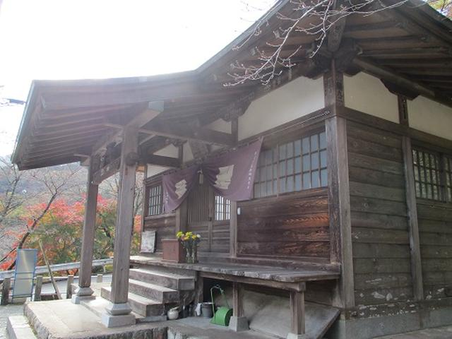 画像10: 【山旅会・登山ガイドこだわりツアー】岡田ガイドからの便り矢倉岳の下見にいってまいりました!