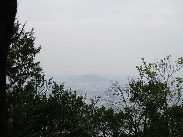 画像3: 【山旅会・登山ガイドこだわりツアー】岡田ガイドからの便り飯野山ツアーにいってまいりました!