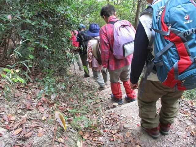 画像7: 【山旅会・登山ガイドこだわりツアー】岡田ガイドからの便り飯野山ツアーにいってまいりました!