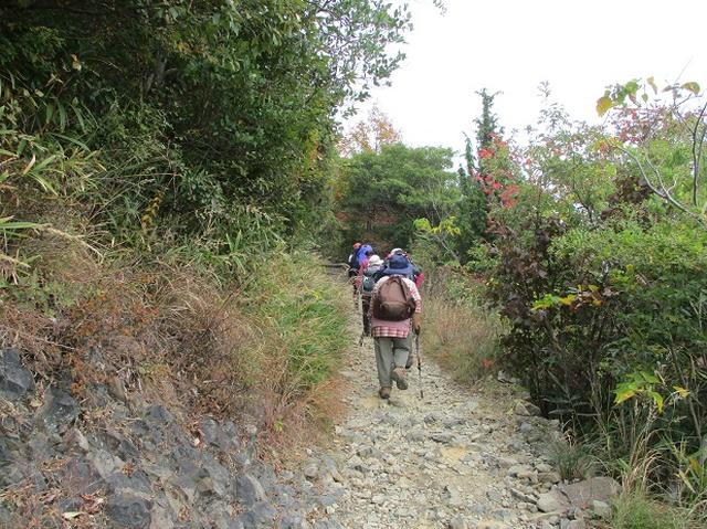 画像2: 【山旅会・登山ガイドこだわりツアー】岡田ガイドからの便り飯野山ツアーにいってまいりました!