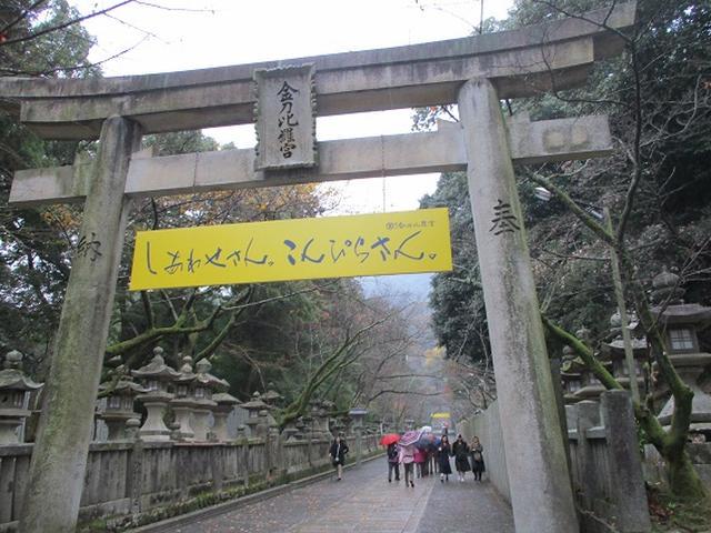 画像8: 【山旅会・登山ガイドこだわりツアー】岡田ガイドからの便り飯野山ツアーにいってまいりました!