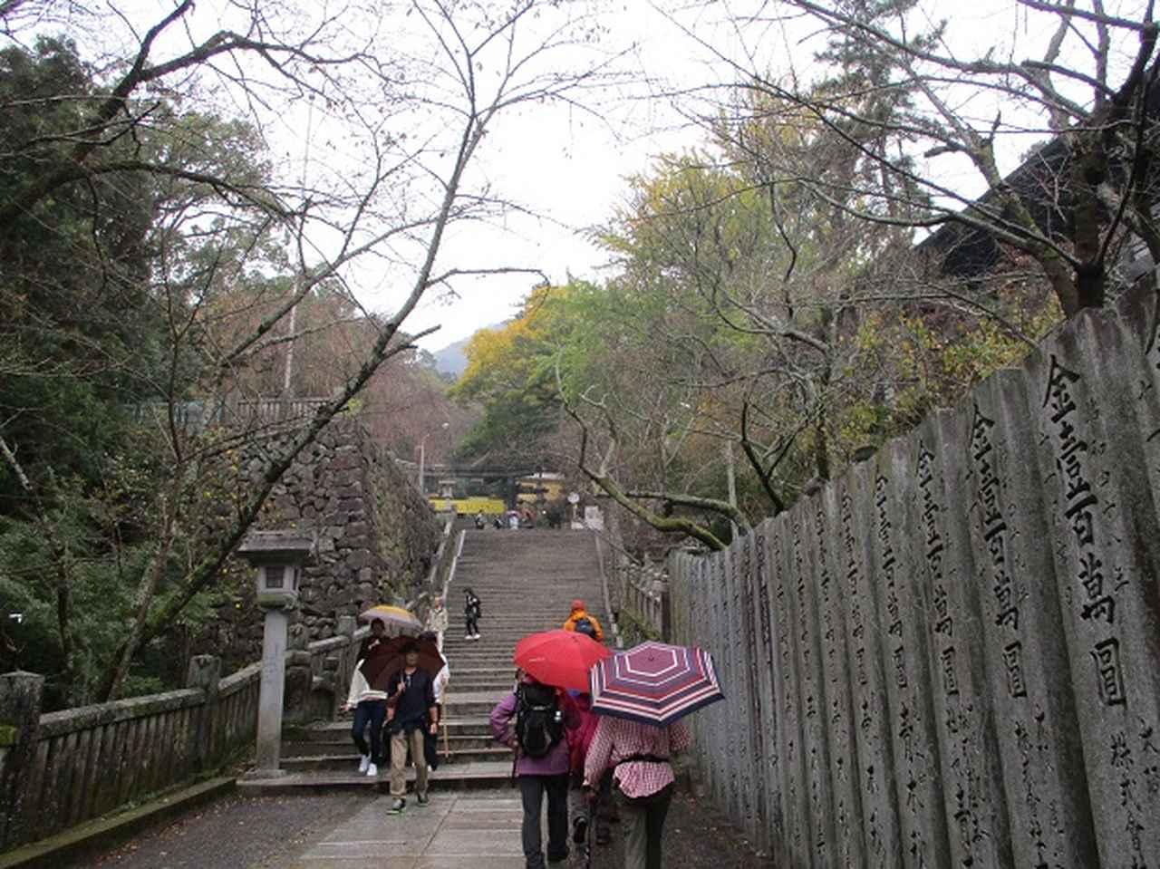 画像9: 【山旅会・登山ガイドこだわりツアー】岡田ガイドからの便り飯野山ツアーにいってまいりました!