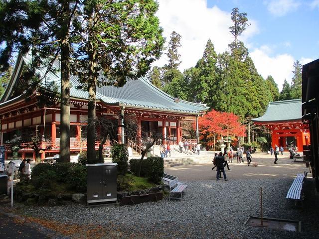 画像1: 【山旅会・登山ガイドこだわりツアー】山旅会ツアー12月までの催行状況