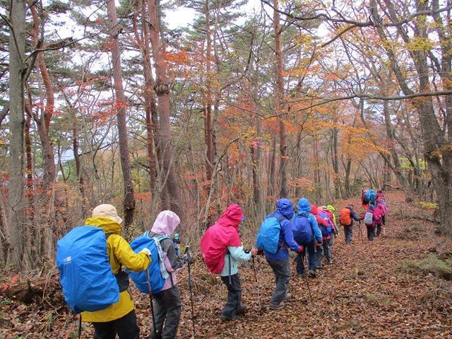 画像8: 【山旅会・登山ガイドこだわりツアー】添乗員からの便り・扇山ツアーにいってまいりました!