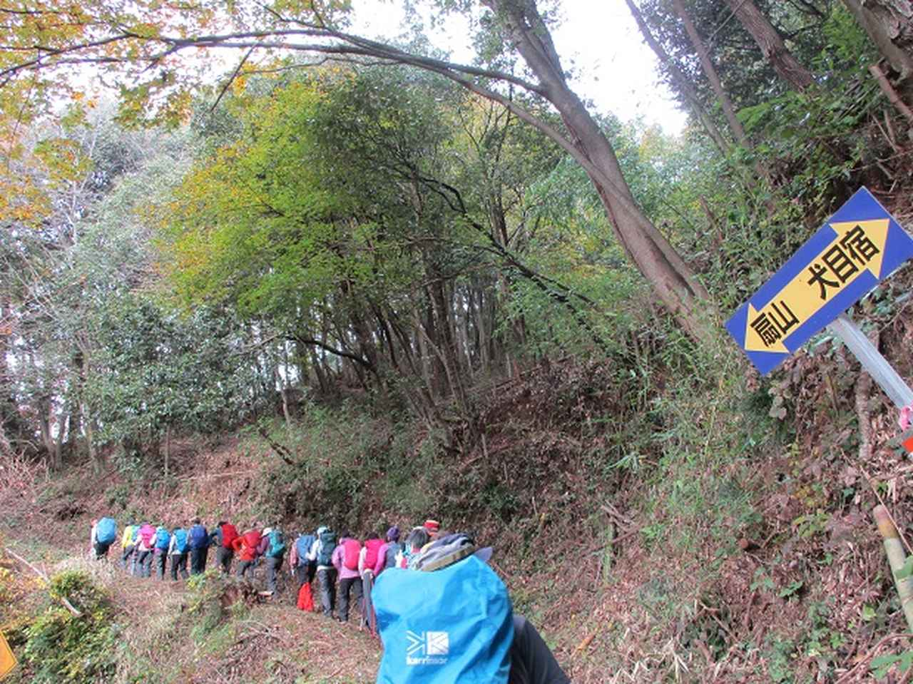 画像1: 【山旅会・登山ガイドこだわりツアー】添乗員からの便り・扇山ツアーにいってまいりました!