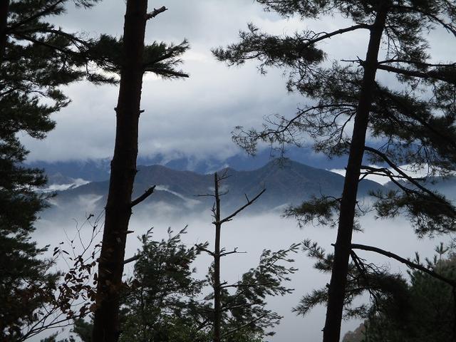 画像4: 【山旅会・登山ガイドこだわりツアー】添乗員からの便り・扇山ツアーにいってまいりました!