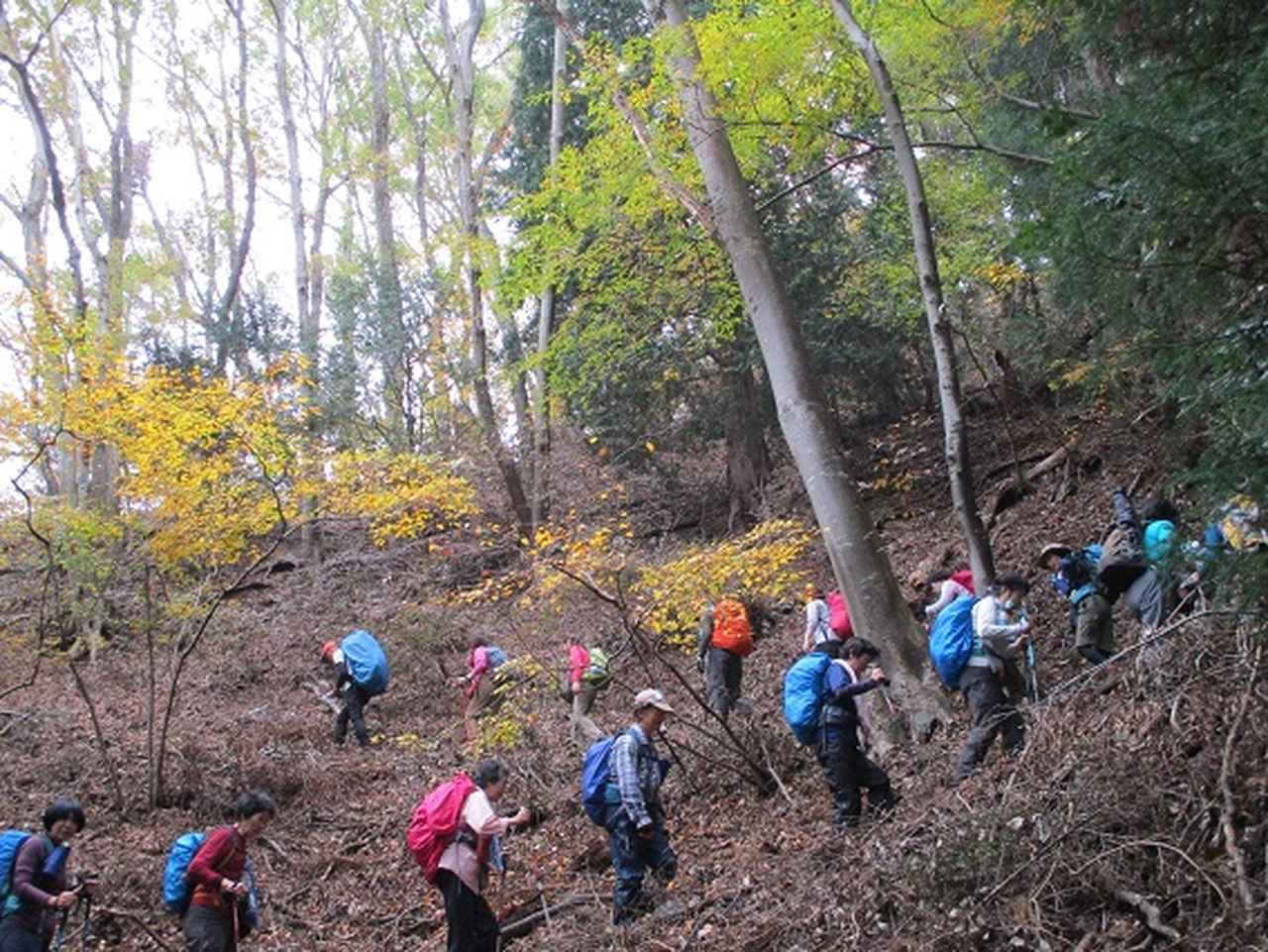 画像2: 【山旅会・登山ガイドこだわりツアー】添乗員からの便り・扇山ツアーにいってまいりました!
