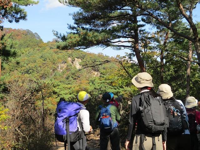 画像4: 【山旅会・登山ガイドこだわりツアー】岡田ガイドからの便り・両崖山から天狗山ツアーにいってまいりました!