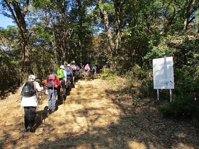 画像3: 【山旅会・登山ガイドこだわりツアー】岡田ガイドからの便り・両崖山から天狗山ツアーにいってまいりました!