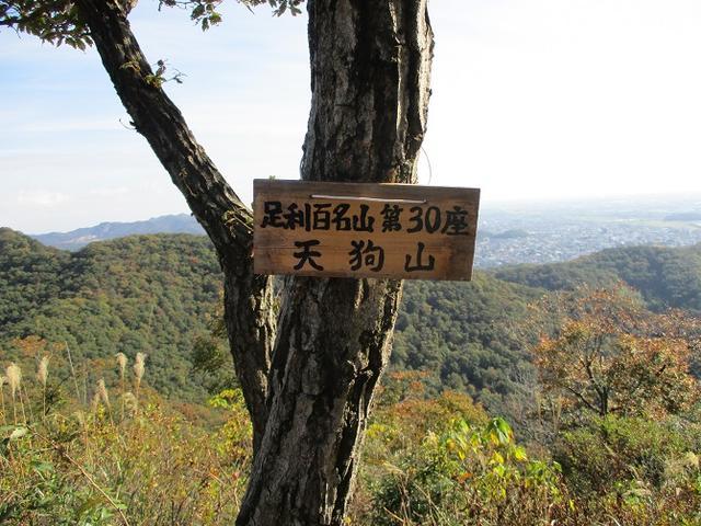 画像8: 【山旅会・登山ガイドこだわりツアー】岡田ガイドからの便り・両崖山から天狗山ツアーにいってまいりました!