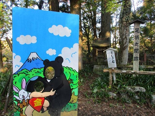 画像11: 【山旅会・登山ガイドこだわりツアー】添乗員からの便り矢倉岳ツアーにいってまいりました!