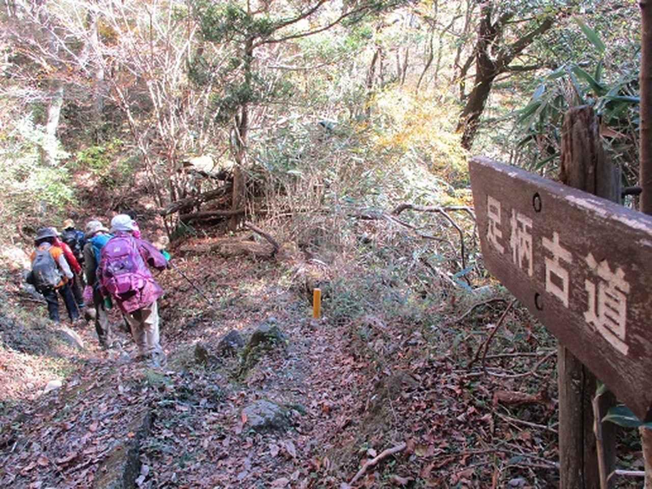 画像12: 【山旅会・登山ガイドこだわりツアー】添乗員からの便り矢倉岳ツアーにいってまいりました!