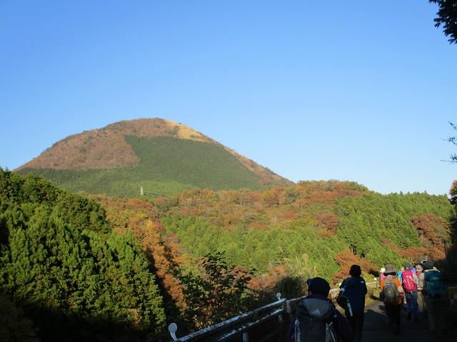 画像13: 【山旅会・登山ガイドこだわりツアー】添乗員からの便り矢倉岳ツアーにいってまいりました!