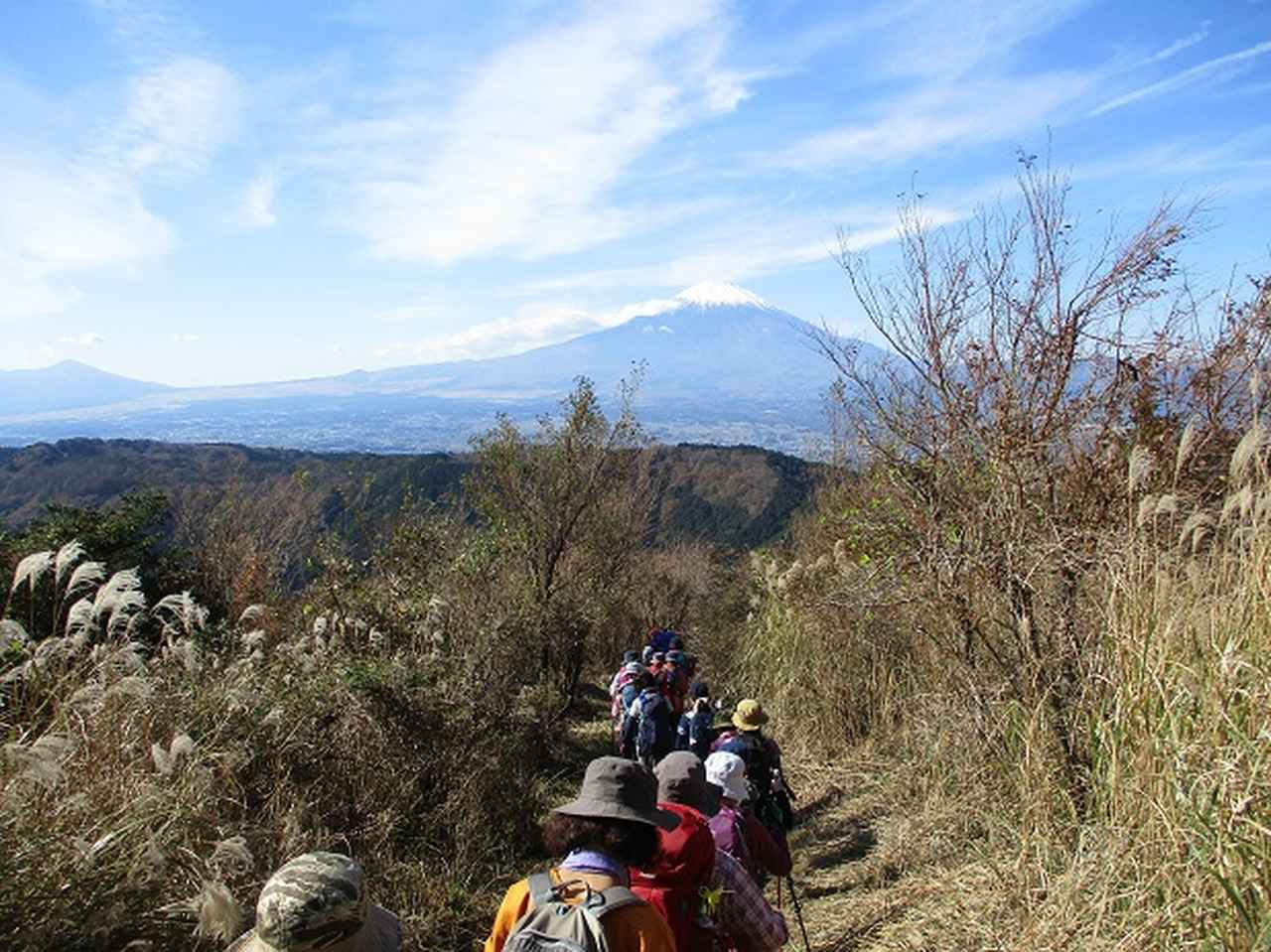 画像8: 【山旅会・登山ガイドこだわりツアー】添乗員からの便り矢倉岳ツアーにいってまいりました!
