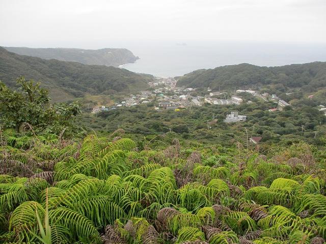 画像3: 【山旅会・登山ガイドこだわりツアー】神津島ツアーの下見にいってまいりました!