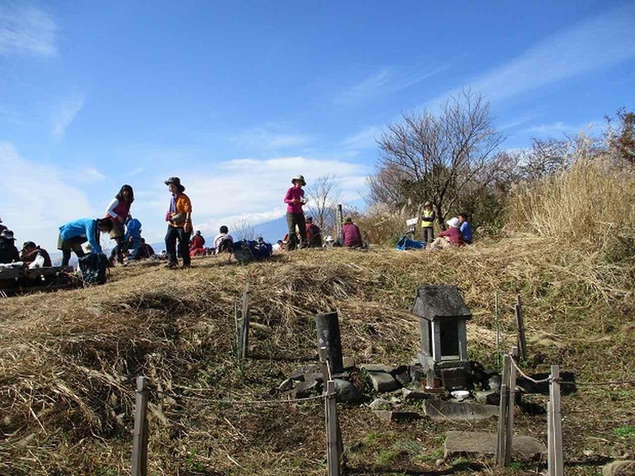 画像6: 【山旅会・登山ガイドこだわりツアー】添乗員からの便り矢倉岳ツアーにいってまいりました!